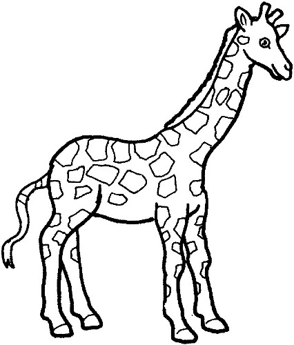 426x500 Giraffe Clipart Black And White Free Clipart Images 3