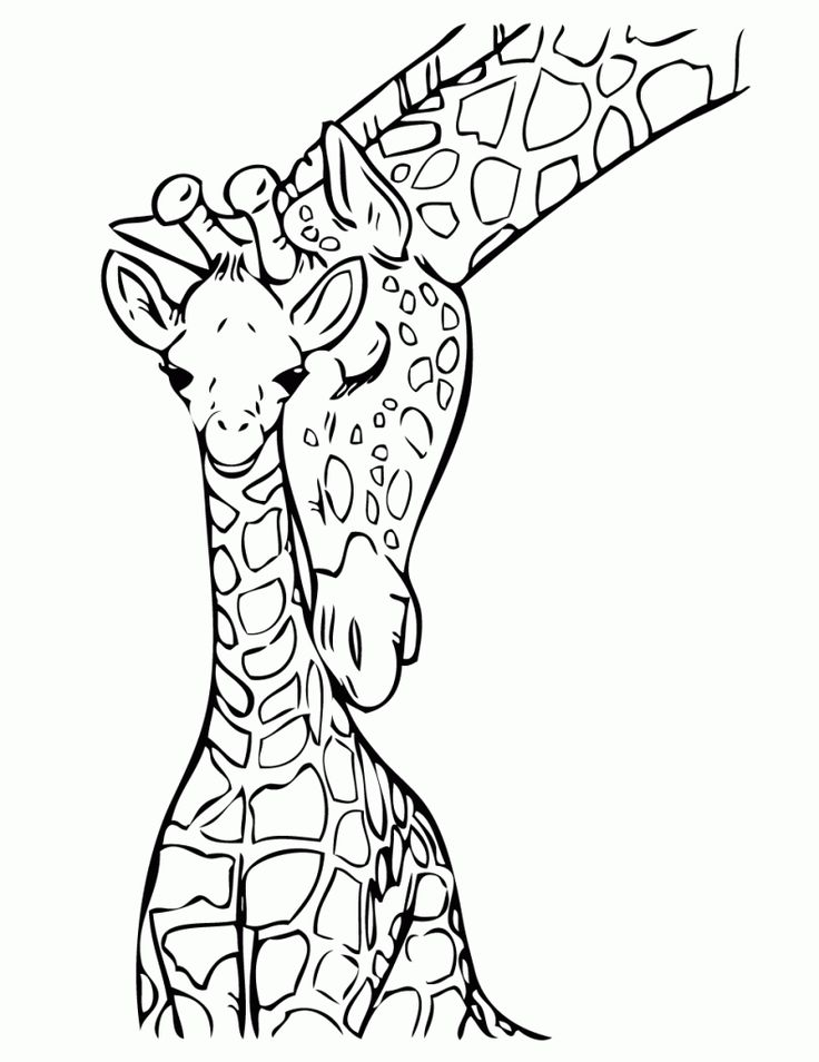 736x954 Best Cute Giraffe Drawing Ideas Cartoon Giraffe