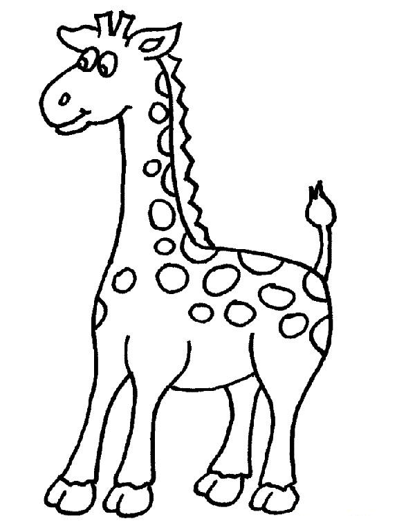 574x766 Giraffe Clipart Black And White Outline Png