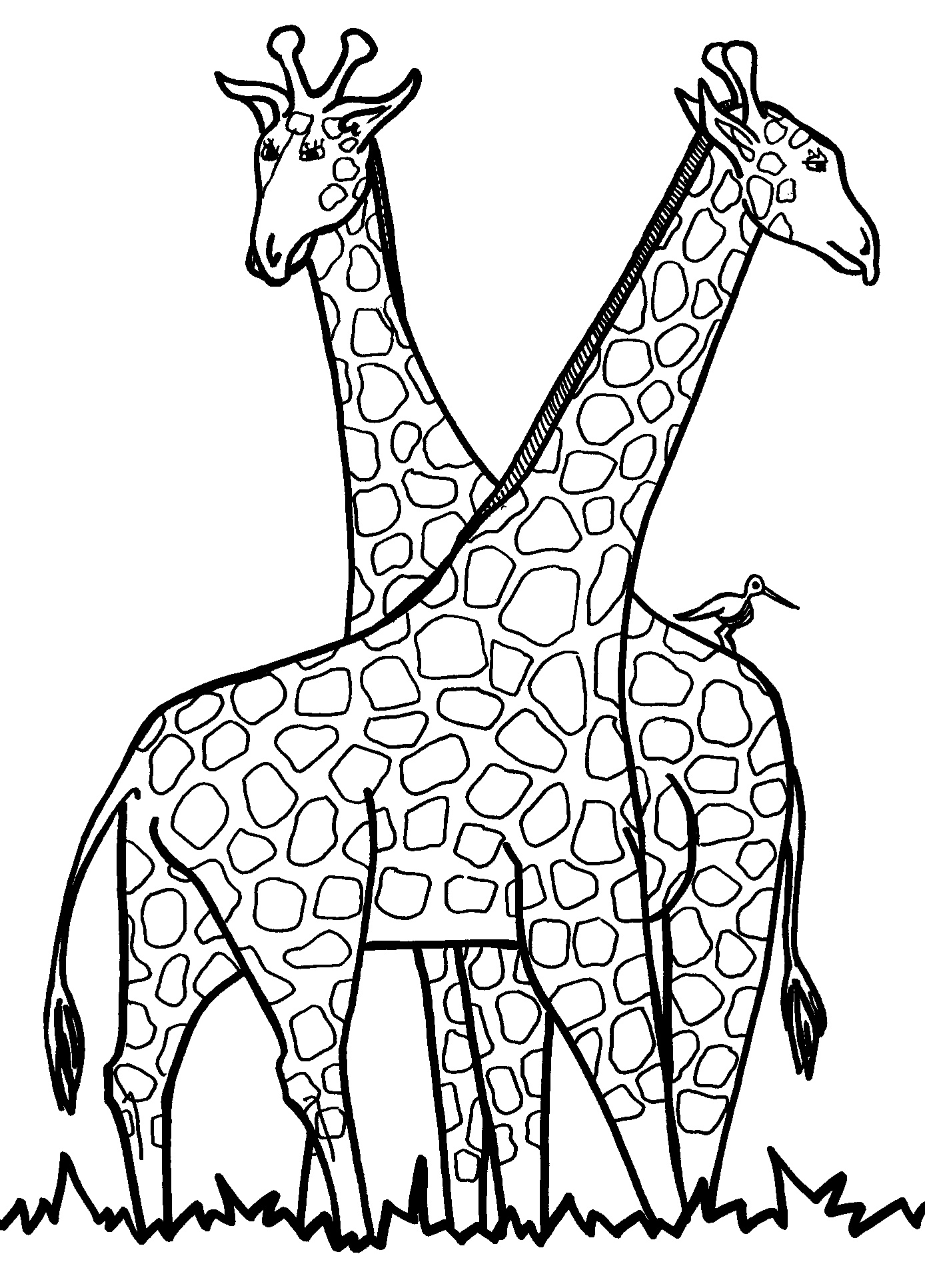 1388x1932 Giraffe Coloring Pages