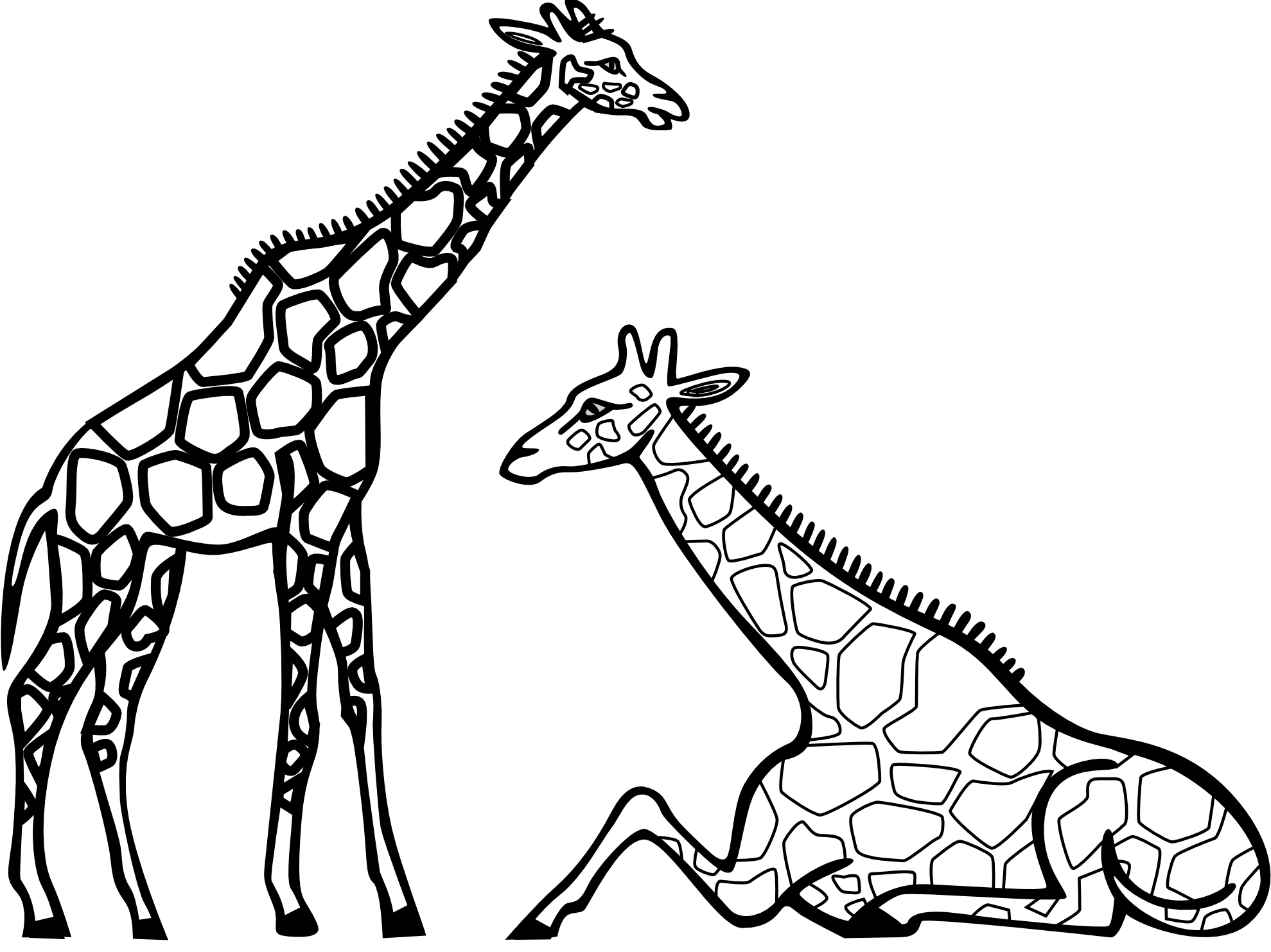 1979x1483 Giraffe Clipart Black And White