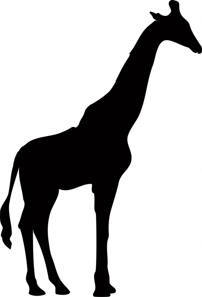 697x1024 Graphics For Giraffe Silhouette Graphics