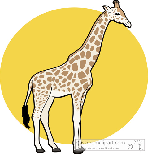 478x500 Free Giraffe Clipart Clip Art Pictures Graphics Illustrations