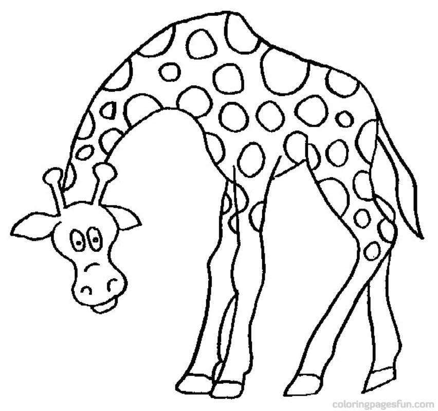 852x800 Giraffe Clipart Cartoon Coloring
