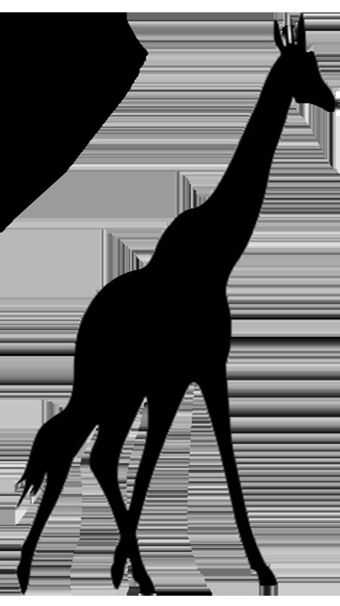 Giraffe Clipart Black And White Free Download Best Giraffe Clipart