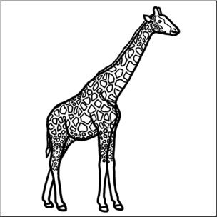 304x304 Clip Art Giraffe Bampw I Abcteach