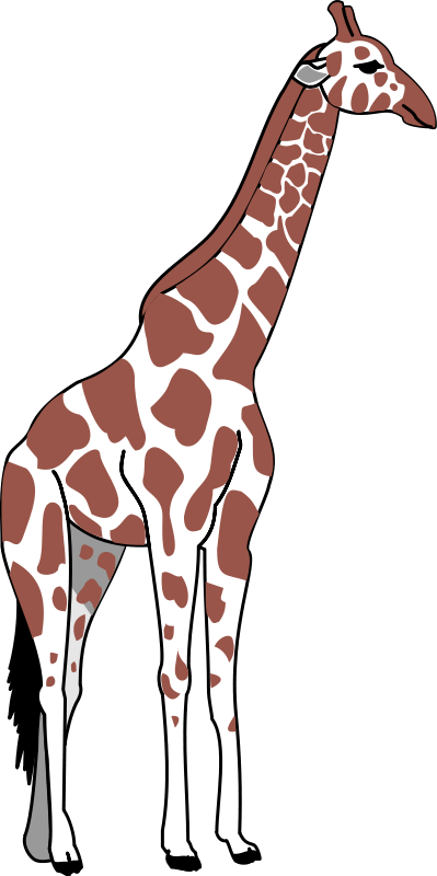 399x800 Giraffe Clip Art Clipart New Cartoon Giraffe 256x256