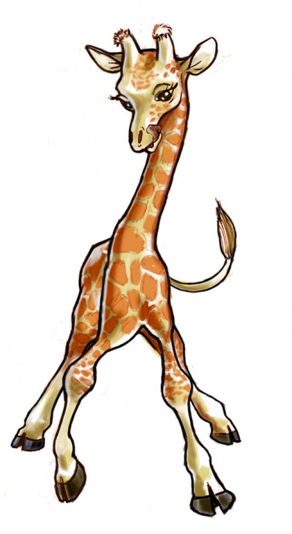 600x1098 Baby Giraffe Veronica, Giraffe And Baby Giraffes