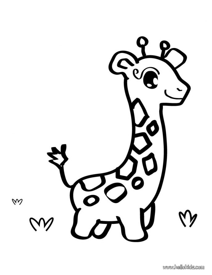 687x888 Coloring Pages Giraffe Coloring Pages 7 Page Giraffe Coloring