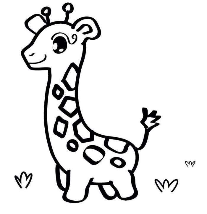 700x723 46 Best Giraffes Images Colouring, Colouring Pages