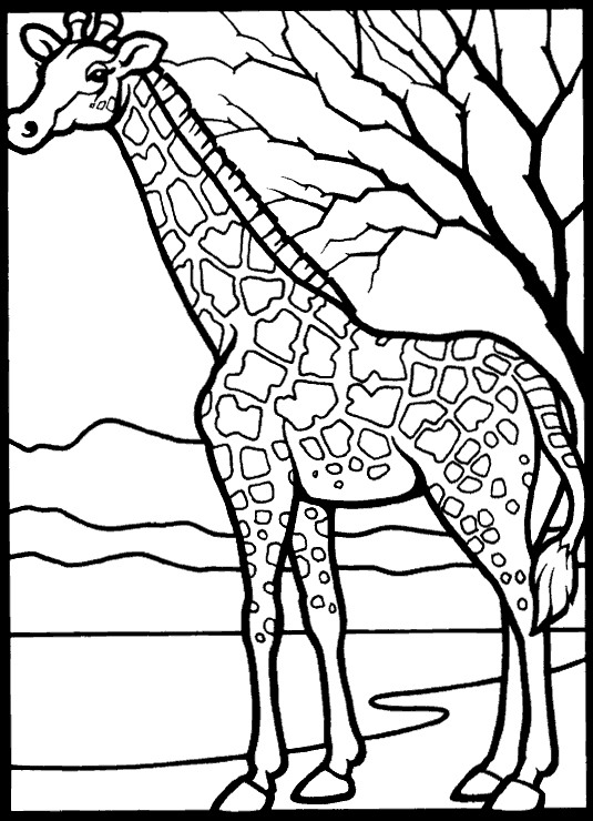 535x740 Kids N 45 Coloring Pages Of Giraffe