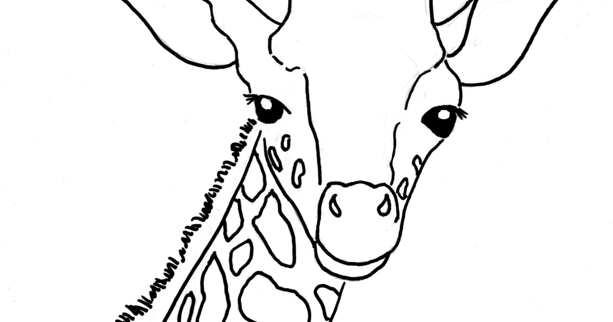 1200x630 Baby Giraffe Coloring Page
