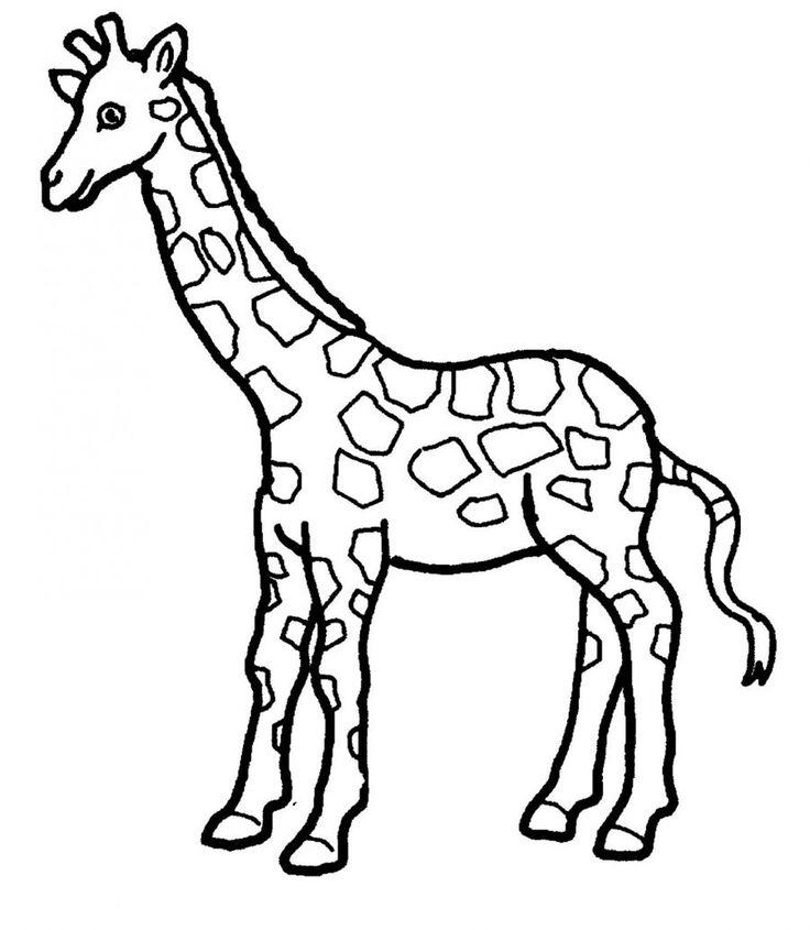 736x845 Best Giraffe Coloring Pages Ideas Giraffe