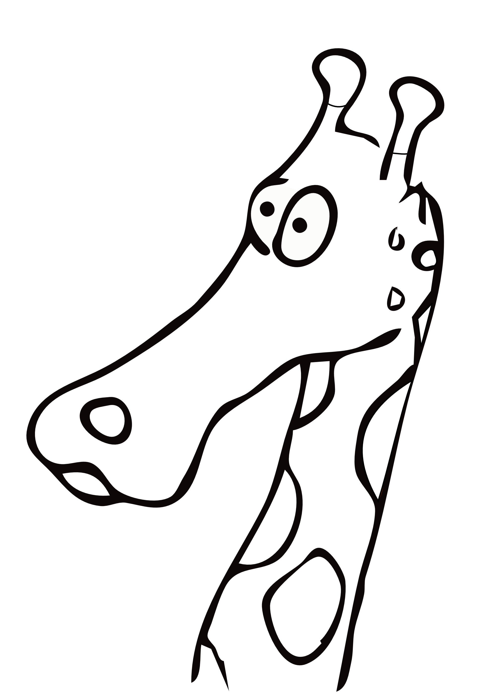 1979x2799 Drawn Giraffe Clip Art Black And White