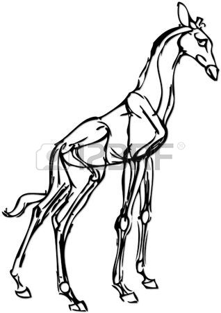 318x450 Simple Drawing Of A Giraffe With Vector Effect Stock Photo