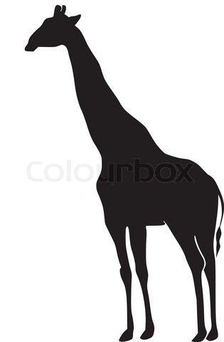 315x480 Die Besten Giraffen Silhouette Ideen Auf Giraffen