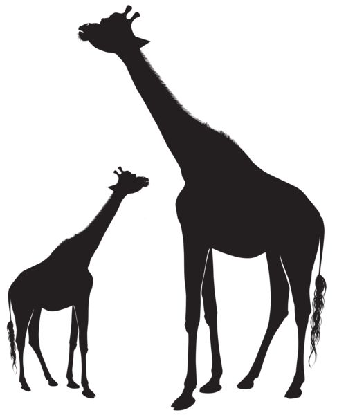 487x600 Giraffes Silhouette Png Clip Art Image Silhouettes