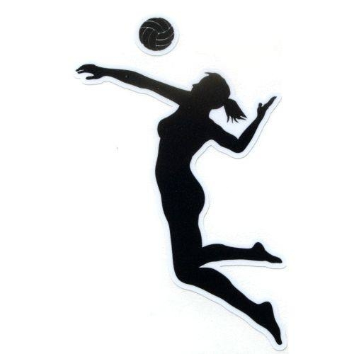500x500 Ladies Volleyball Clipart Cliparts