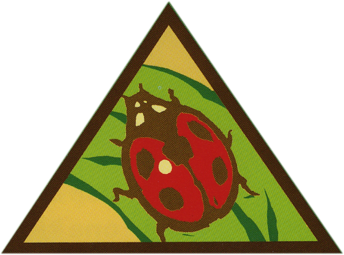 700x520 Girl Scout Leader 101 Brownie Bugs Badge