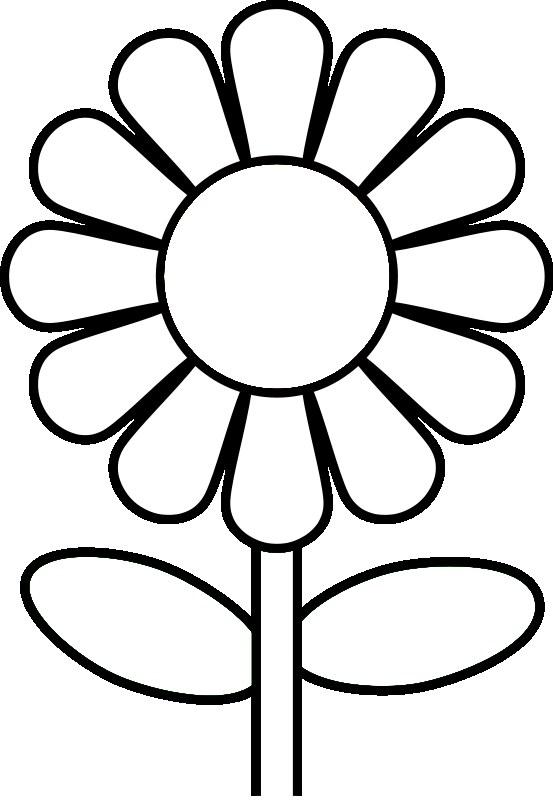 553x800 Printable Daisy Clipart
