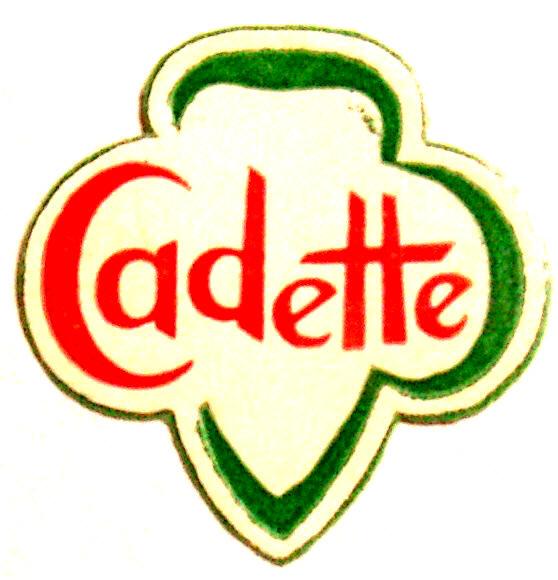 558x580 Cadette Girl Scout Clipart