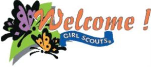 500x222 Girl Scout Troop 222 (Dunedin, Florida) Homepage