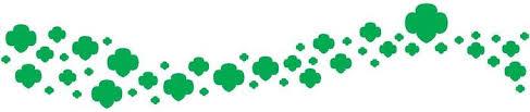 487x103 Gc5x71y Girl Scout Logo