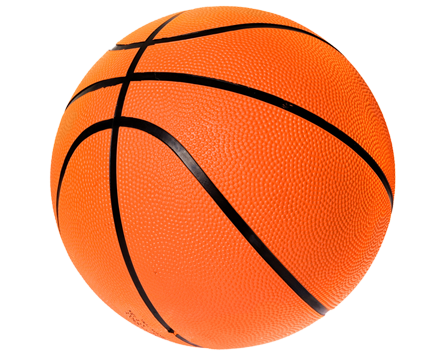 445x355 Holiday Tournaments Girls Basketball Sports