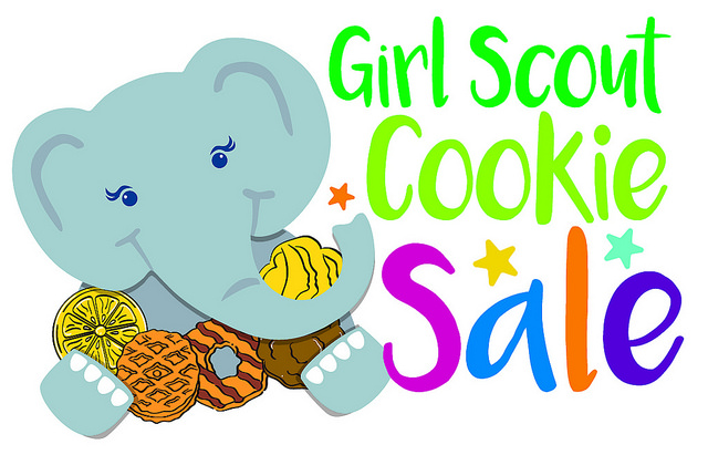 640x411 Lakeville Girl Scouts