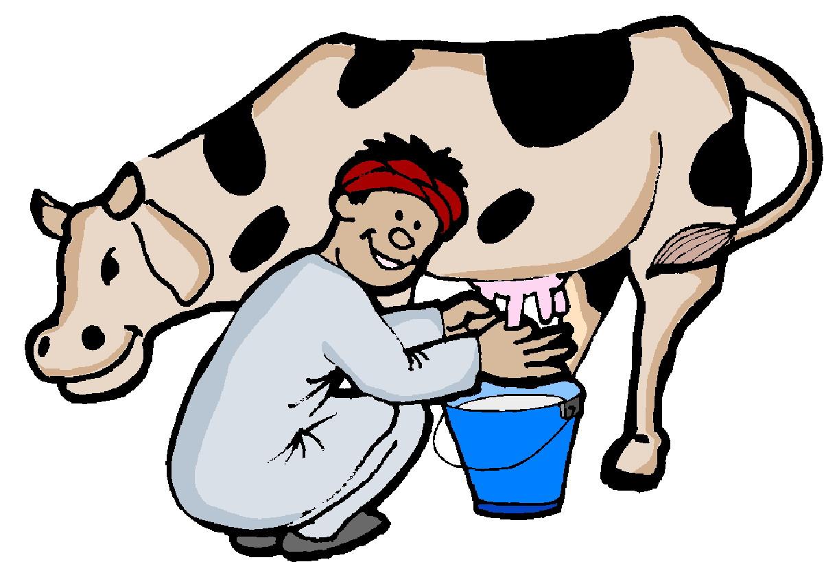 1220x819 Cows Clip Art
