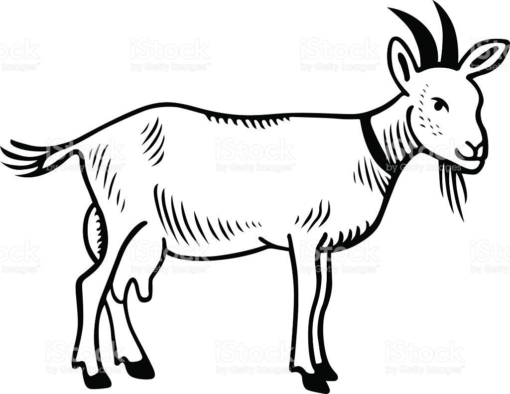 1024x791 Goat Clipart Body