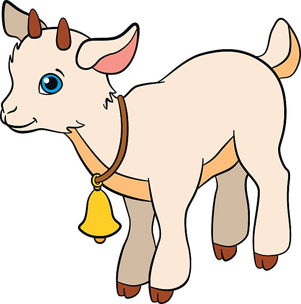 606x612 Cute Clipart Baby Goat