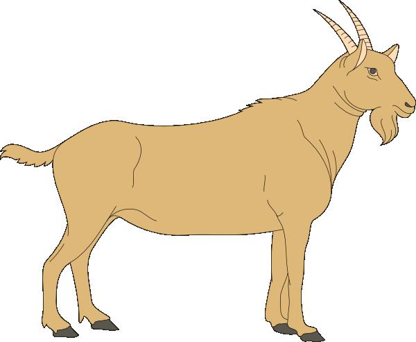 600x493 Brown Goat Clip Art