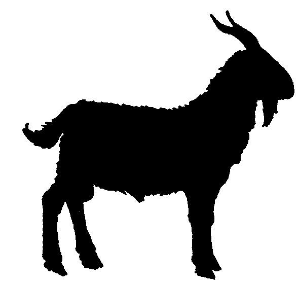 588x562 Goat Clipart Goat Clipart Fans 2