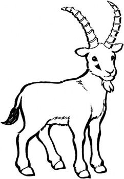 242x350 Outdoor Goat Clipart, Explore Pictures
