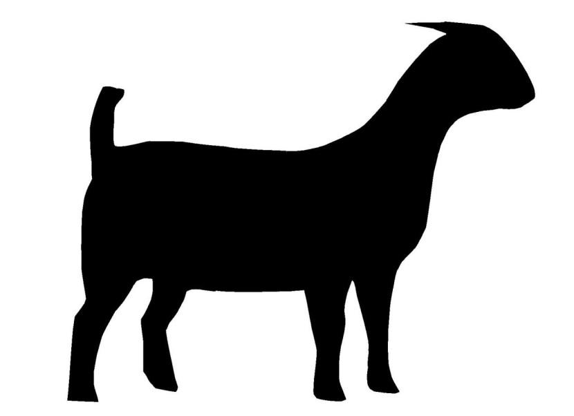 830x602 Boer Goat Clip Art 2
