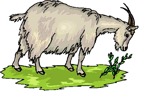 482x318 Goat Clip Art Black And White Image Free Clipart