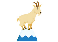 200x146 Search Results For Goat
