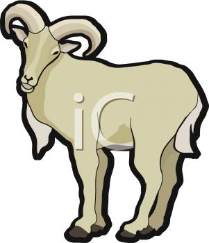 301x350 Top 74 Ram Clip Art