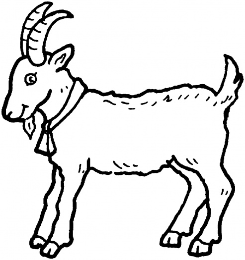 493x525 Graphics For Goat Outline Graphics