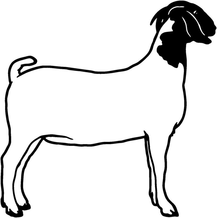 830x834 Goat Clip Art Vector Goat Graphics Image Clipartix 2