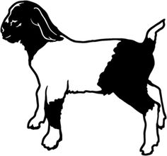 236x220 Boer Goat Head Clip Art Clip Art By Jackie Nix Cartoon Drawing