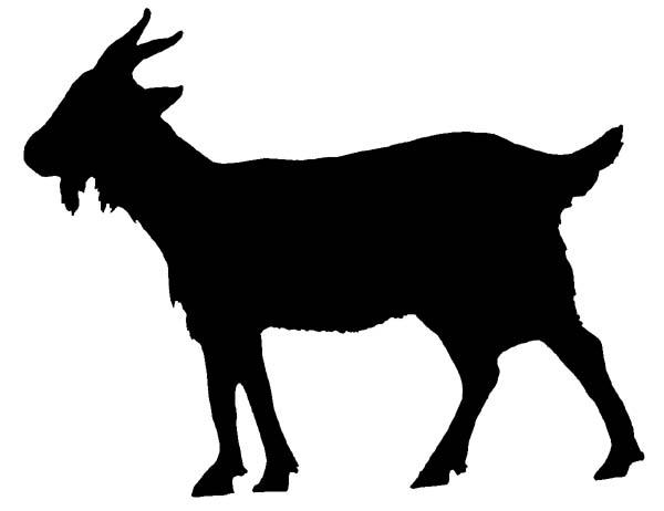 600x462 Mountain Goat Clipart Disney
