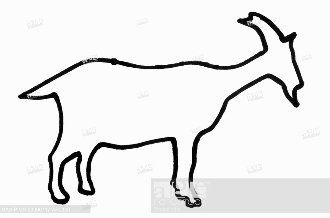 1050x694 Outline Of A Goat, Stock Photo, Picture And Royalty Free Image