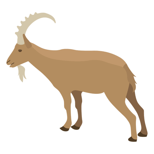 512x512 Wild Goat Illustration