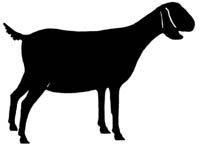Goat Silhouette Free Download Best Goat Silhouette On Clipartmagcom
