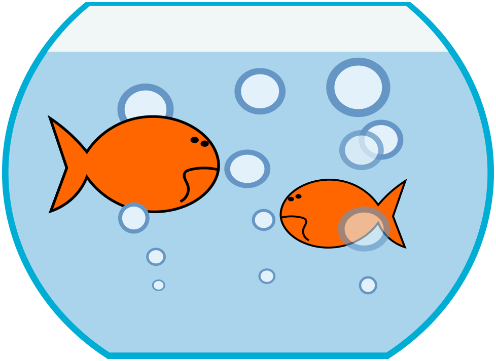 978x713 Goldfish Cliparts Girl 216714