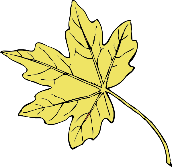 600x585 Gold Maple Leaf Clip Art