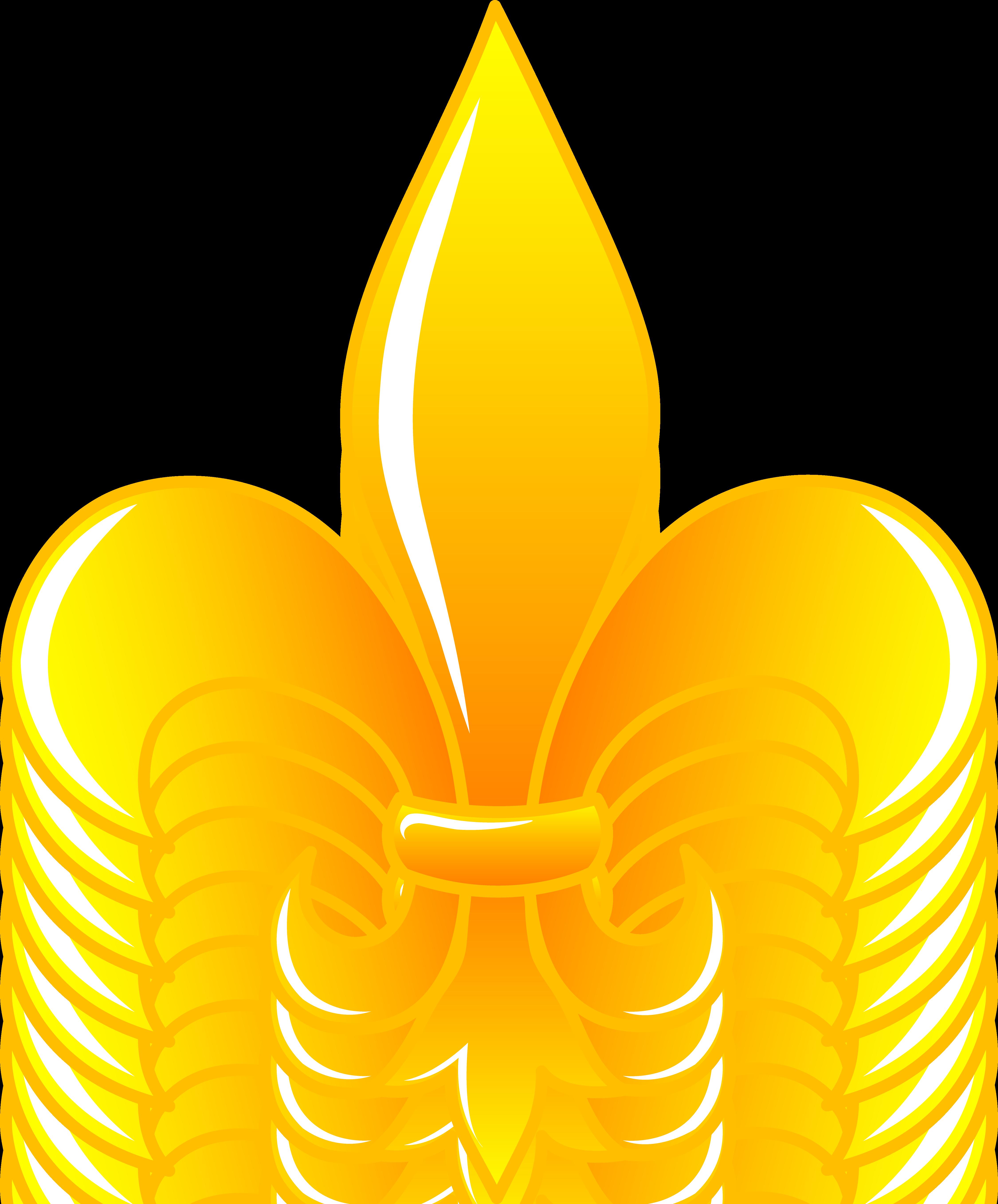 4501x5429 Shiny Golden Fleur De Lis