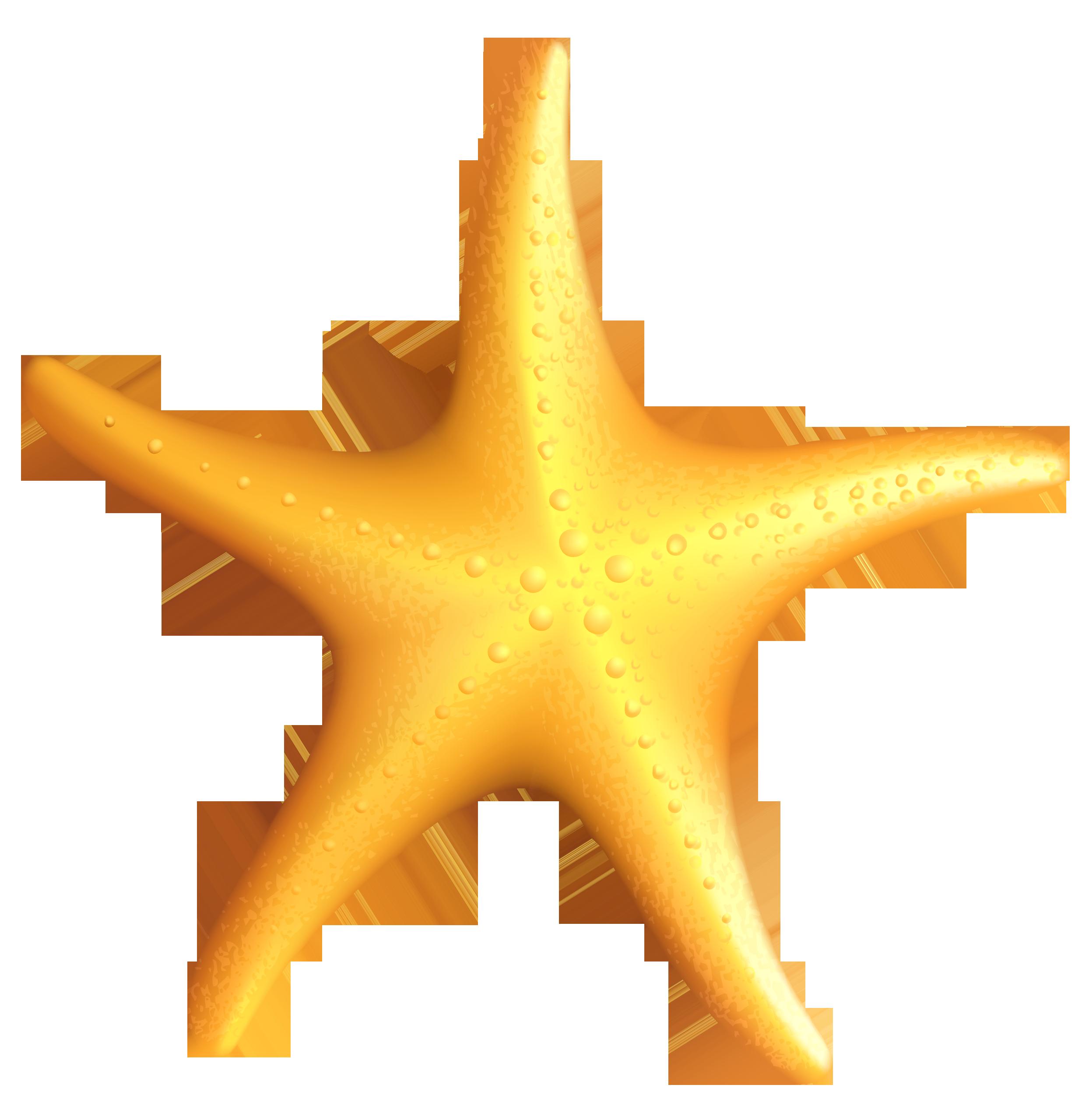 2488x2558 Star Fish Clip Art Many Interesting Cliparts